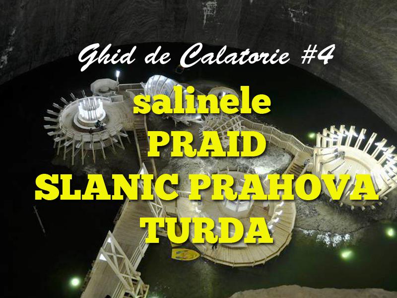 saline copy
